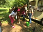Campers learn about caring for horses and how to ride them