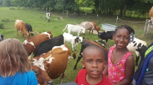 children surrounded by cows