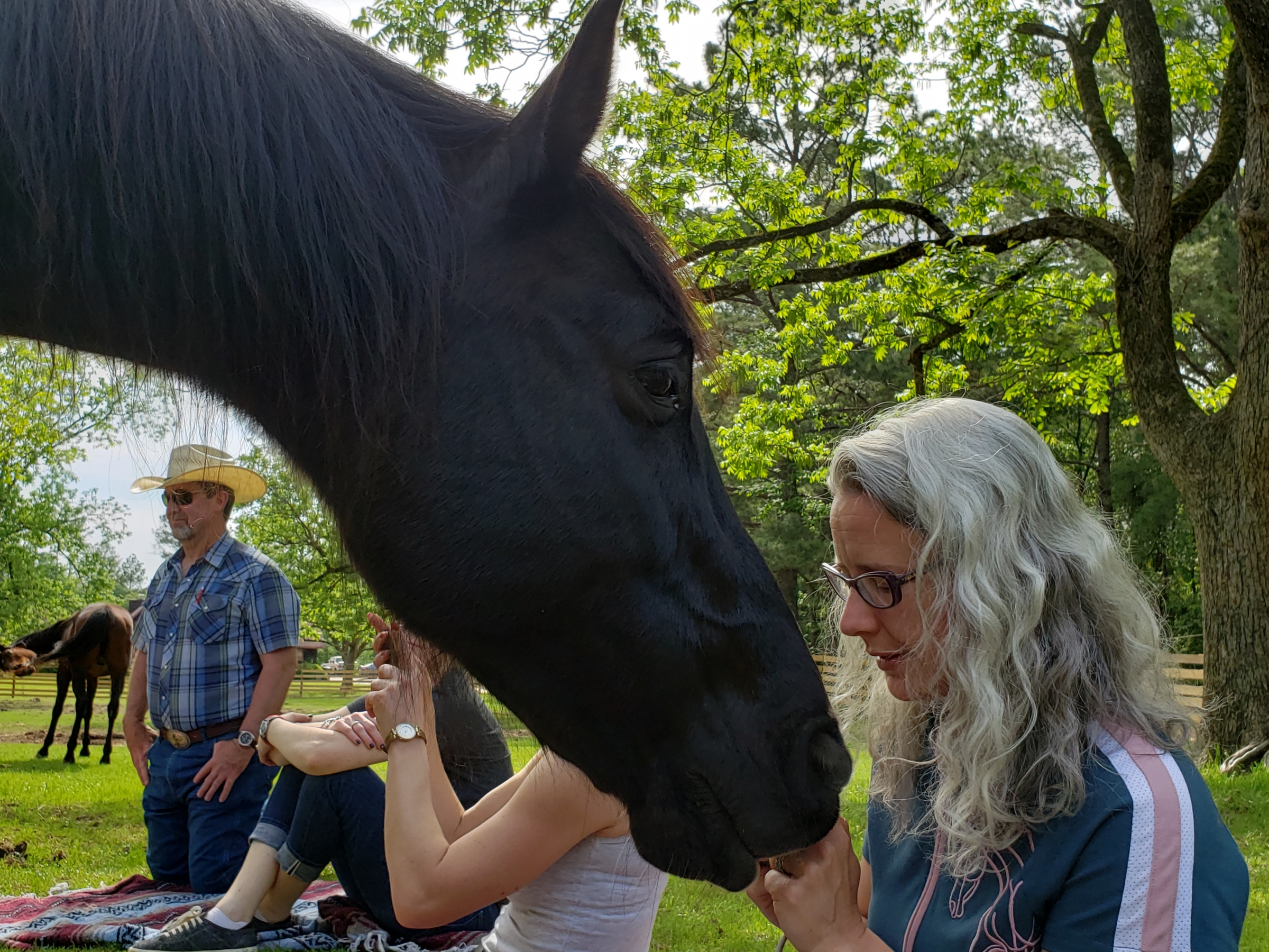 A black horse has its nose near a woman's nose. The woman has white hair.